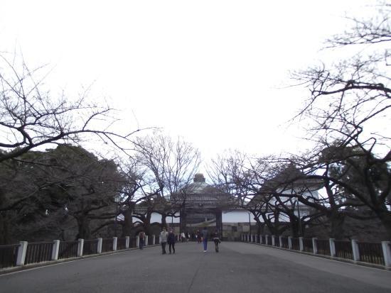 田安門 - Picture of Kitanomaru Park, Chiyoda - TripAdvisor
