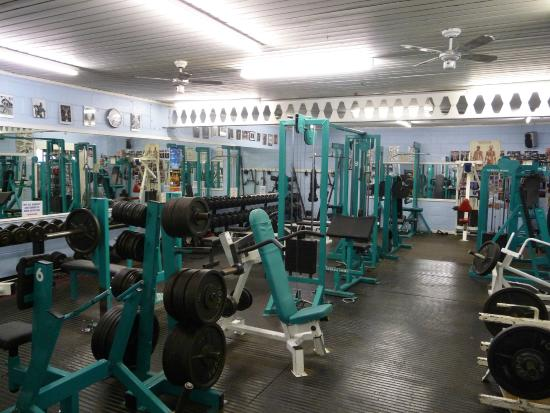 Fitness and Physique Gymnasium