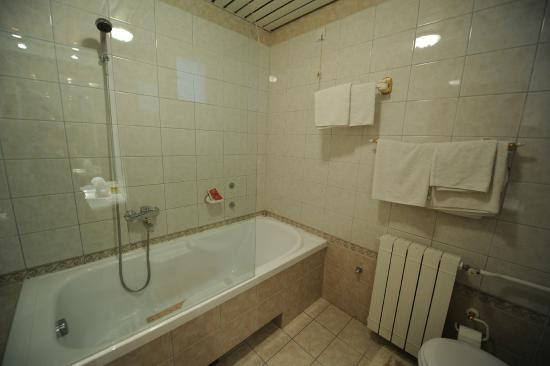 Hotel Rose Diplomatique: Bathroom