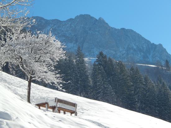 Kmecka hisa Stiftar: Mighty mountain Raduha