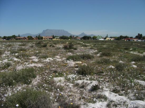 Milnerton, South Africa: getlstd_property_photo