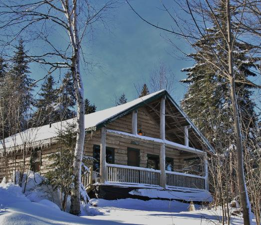 "Ridgeback Lodge: My cabin -""Robin's Nest"""