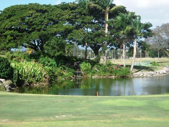 Barbados Golf Club: 9-18 Green feature from Restaraunt/Bar