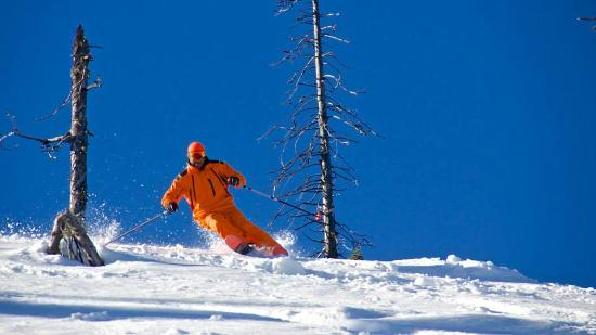 Great Northern Powder Guides: Some sweet wide open glades and plenty of good tree skiing