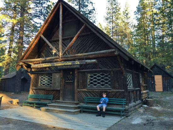 Wawona, Californië: Great place to let the kids run around.