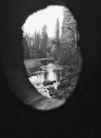 Wawona, CA: Great photo opportunities at the covered bridge.