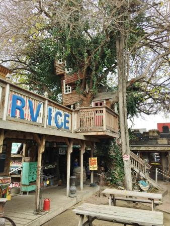 Bravo Farms: Most awesome tree house!