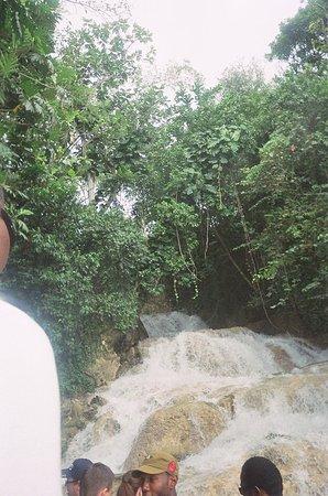 Boscobel, Jamaica: 12