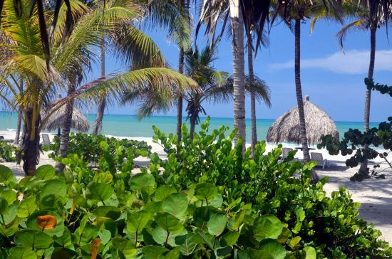 Palomino Beach at Hotel Aiteen la Guajira