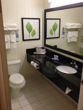 Fairfield Inn & Suites Houston I-45 North: Bathroom
