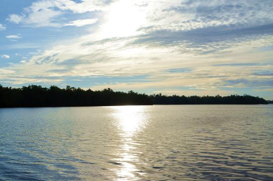 Dalmanuta Gardens - Ayurvedic Resort & Restaurant: View of the river from the dining jetty