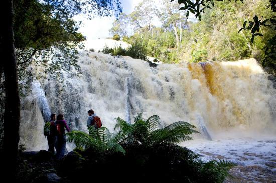 Dip Falls, Mawbanna Tasmania
