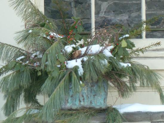 John Harris-Simon Cameron Mansion: Winter arrangements at the holiday grace the mansion and grounds.