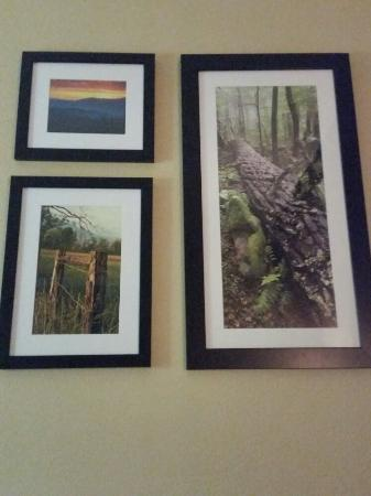 La Quinta Inn Pigeon Forge-Dollywood: I LOVE the photos in our room!!