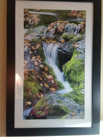 La Quinta Inn Pigeon Forge Dollywood: I LOVE the photos in our room!!