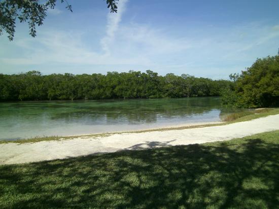 Islamorada Library Beach: mangrove island