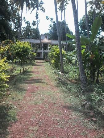 La Maison de Varkala: la maison de v arkala