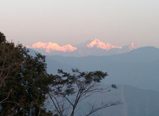 Hill Top Tourist Lodge: view of the Kanchenjunga from the balcony.