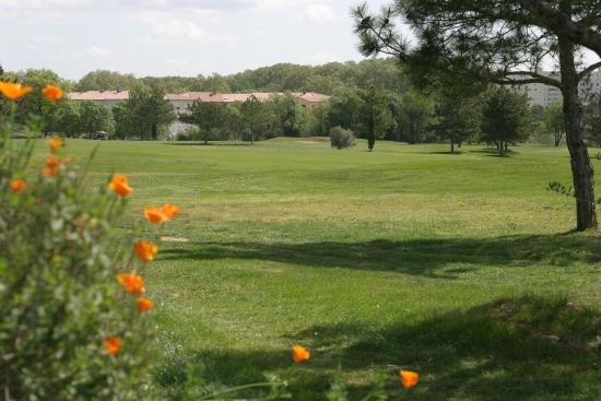 Quality Hotel du Golf Montpellier Juvignac : Le green depuis les Chambre supérieure et les suites vue golf