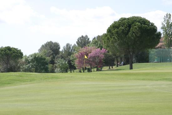 Quality Hotel du Golf Montpellier Juvignac : Le parcours 9 trous