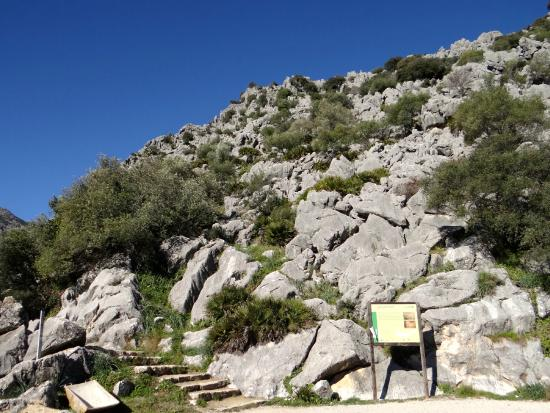 Pileta Caves (Cueva de la Pileta): Pileta Caves: Parking area and steps up to cave entrance.