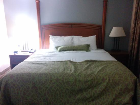 Staybridge Suites Toronto Mississauga: love the king size bed