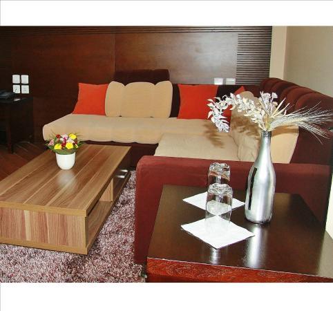Central Hotel Tana: salon de la suite