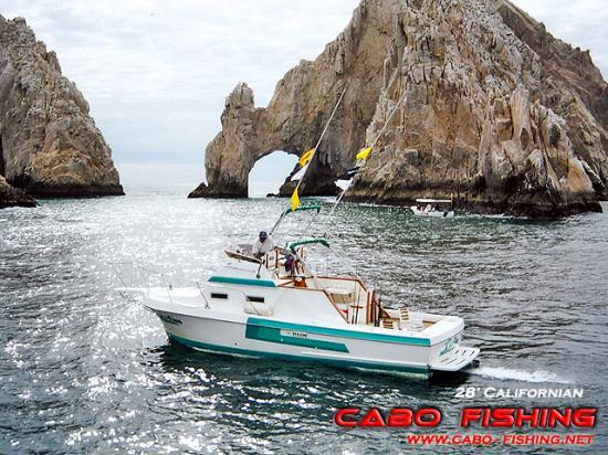 Foto de cabo fishing charters cabo san lucas 26 39 super for Cabo san lucas fishing charters prices