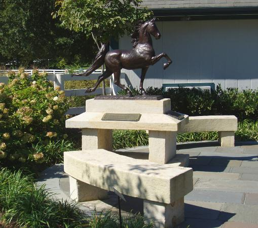 The American Saddlebred Museum: The World's Grand Champion Wild-Eyed & Wicked Courtyard