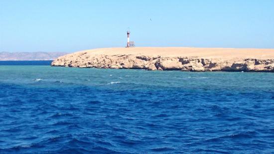 Emperor Divers El Gouna - Day Trips: Umm Gamer Dive site