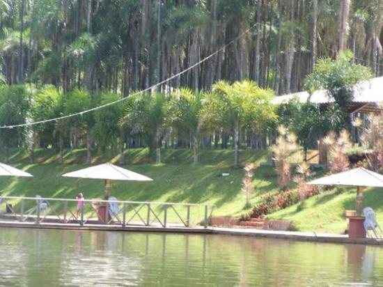 Goiania, GO : Verde por todos os lugares