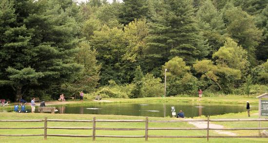 Montebello, Βιρτζίνια: Fee Based Rainbow Trout Ponds