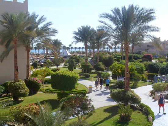 Coral Sea Waterworld Resort: View from Reception