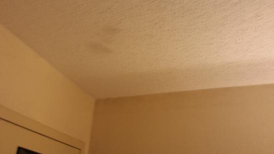 Days Inn by Wyndham Dothan: Ceiling peeling above the shower