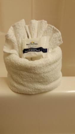 Microtel Inn & Suites by Wyndham Ocala: Towel origami--always a nice touch