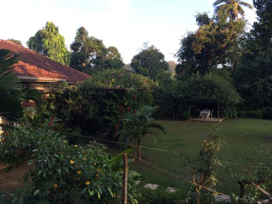 The Kandyan Manor: View from chalet