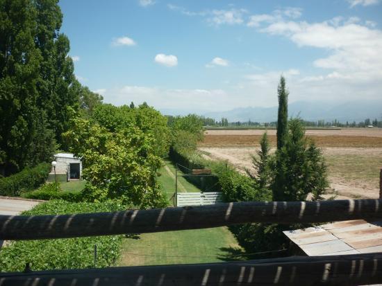Cabanas Perdriel : foto desde el mirador al parquizado de la zona de las cabañas