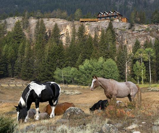 Hawley Mountain Guest Ranch: Lodge and horses