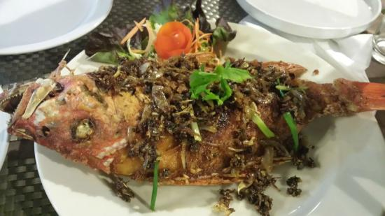 Tropical Garden Lounge Hotel: papas red snapper for two