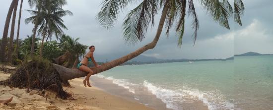Tropical Garden Lounge Hotel: bestes fotomotiv mae nam-- lamei beach