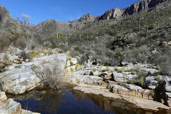 Rameda Foothills Resort: sabino canyon