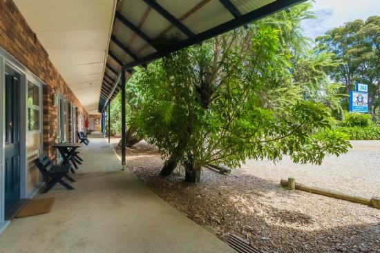Narooma Motel: Front pathways for rooms