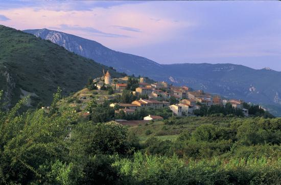 Auberge la Table du Curé : Le village de Cucugnan D'Alphonse DAUDET