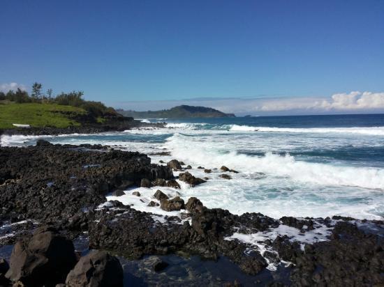 coast line hike  kauai - Picture of Tread Lightly Kauai