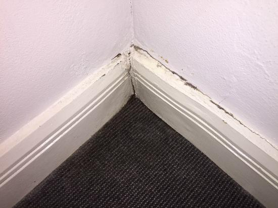 Mantra on Kent: mould in bedroom