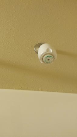 Hampton Inn Toledo South Maumee : Shower head with grime