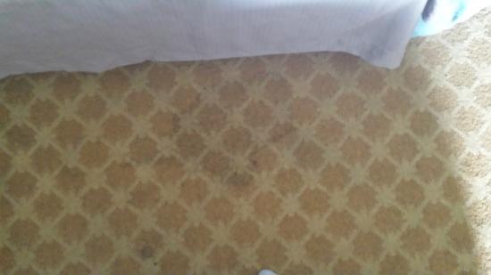 Hampton Inn Toledo South Maumee : Stains in carpet