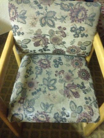 Nashville Airport Inn & Suites : A filthy chair