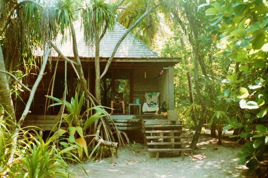 gartenbungalow photo de gangehi island resort gangehi. Black Bedroom Furniture Sets. Home Design Ideas