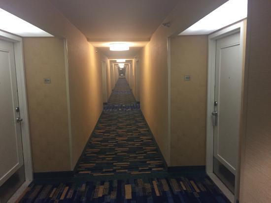 DoubleTree by Hilton Hotel San Diego - Mission Valley: Corridor